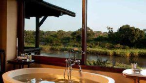 You'll be spoiled for choice on your honeymoon at Sabi Sands Game Reserve
