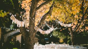 Wedding decor alternatives to flowers