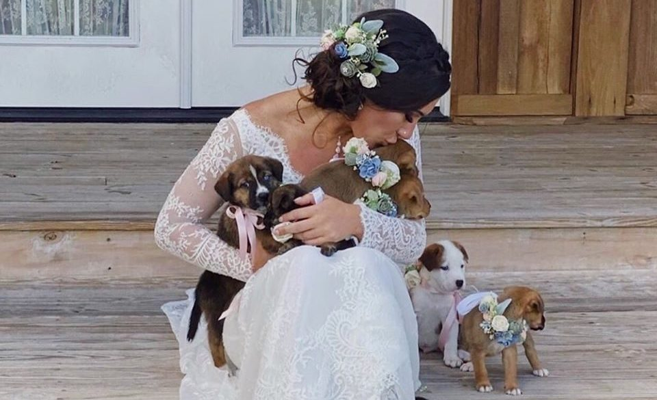 Bridesmaids trade bouquets for puppies