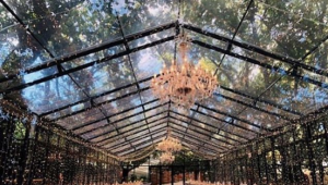 Glasshouse wedding venues in South Africa