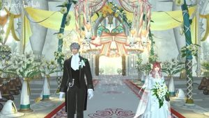 Couple marry during online Final Fantasy game