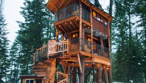 Treehouse wedding venues from around the world