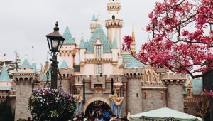 The happiest place on earth: Disneyland weddings