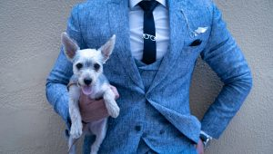 How to have a pet-friendly wedding