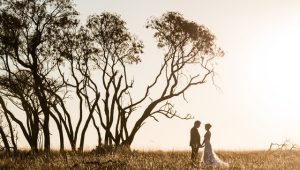 Mountainview Game Ranch: Elegance and ease in one wedding venue
